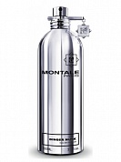 MONTALE GINGER MUSK - парфюмерная вода